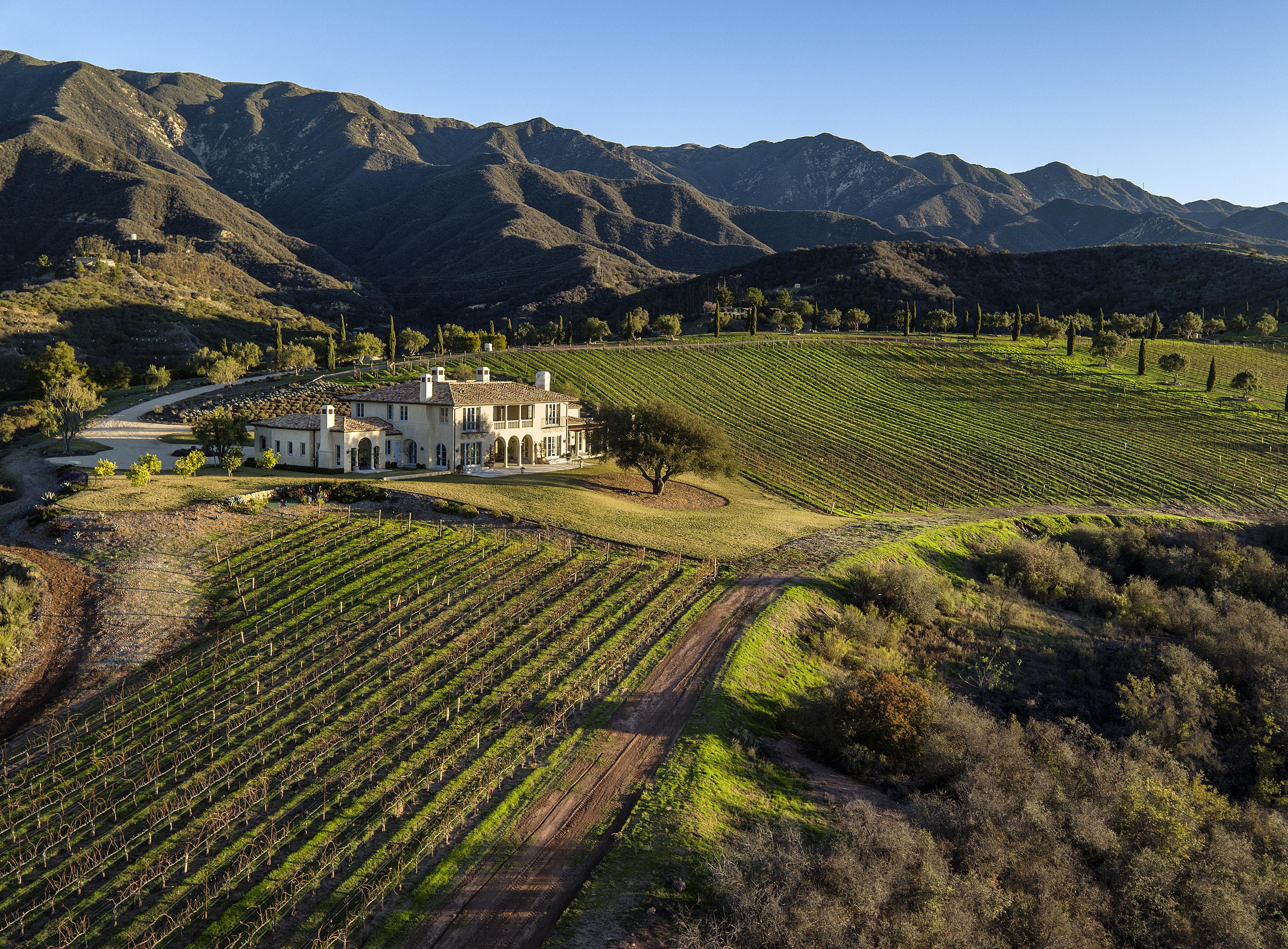 Stunning Coastal Vineyard Estate Suzanne Perkins